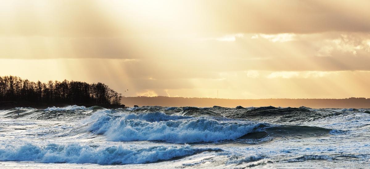 Üks jupp tuult, valgust ja lainet
